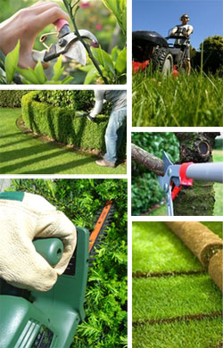 GBW Landscaping Maintenance Services Aylesbury Bucks